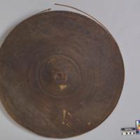 Shield (Taming)