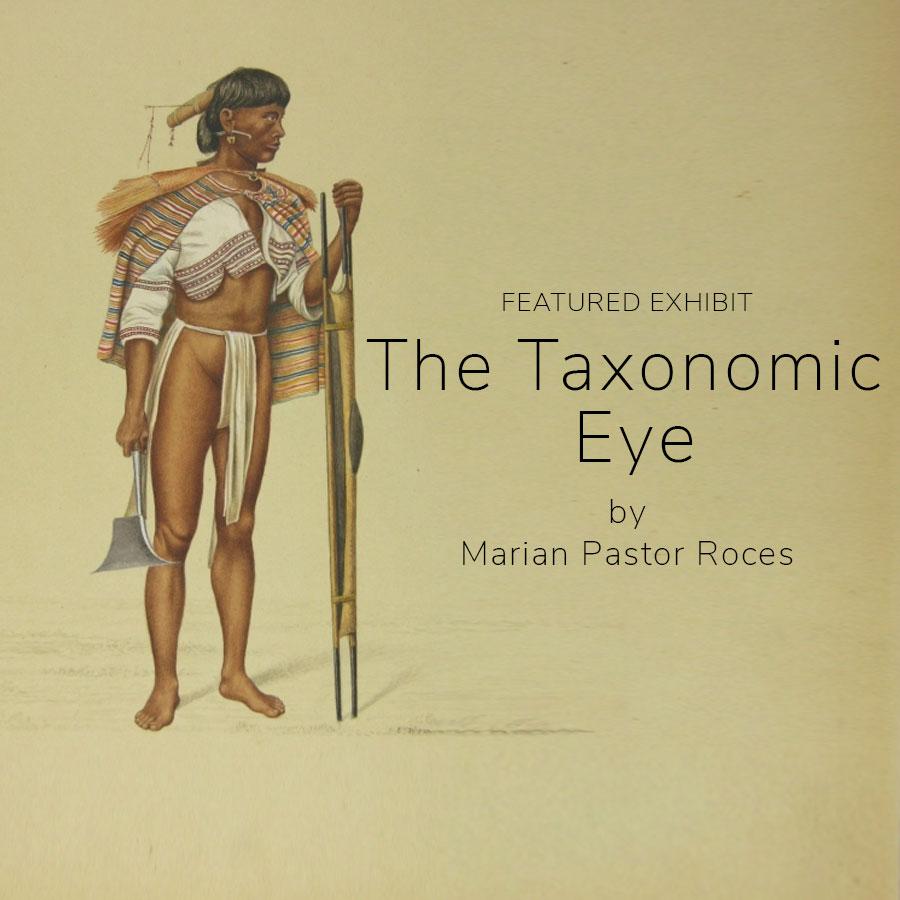 The Taxonomic Eye